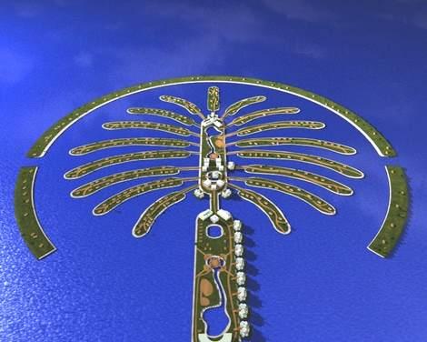 09-a-schede-ico-Focus-XXI-secolo-palm-island