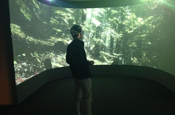 Installazioni e proiezioni immersive